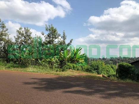 Gatundo Kiamwangi 2 Acre Farmland for Sale